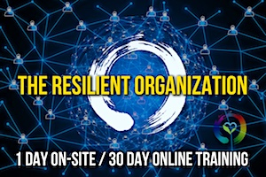 The Resilient Organization Training & Coaching Program